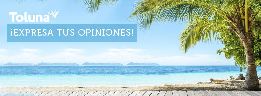 Opiniones Toluna